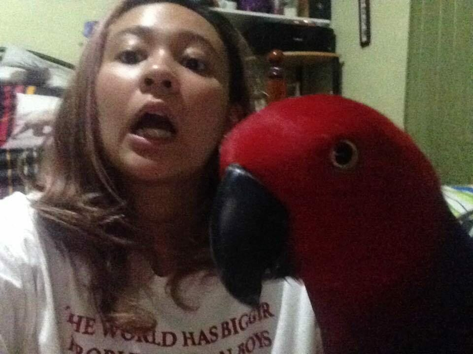 Ysabell and her Parrot